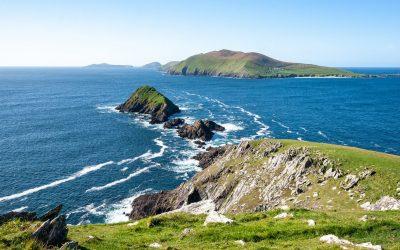 Participe au MOOT 2021 en Irlande